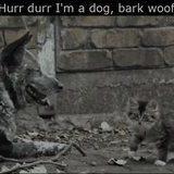 Bark! Woof!!
