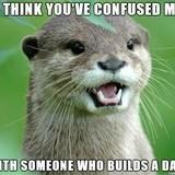 Otter Dad Joke