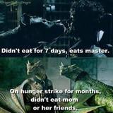 Good guy dragons